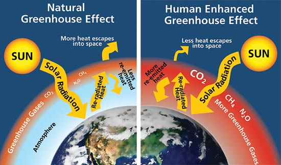 Greenhouse Effect Model