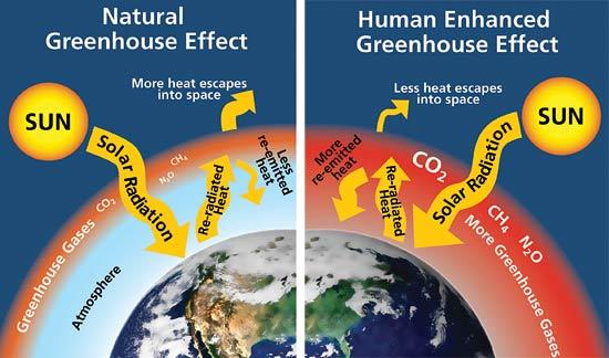 Greenhouse Effect Model
